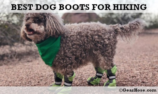 Top 9 best dog boots for hiking and outdoors (Updated 2019)