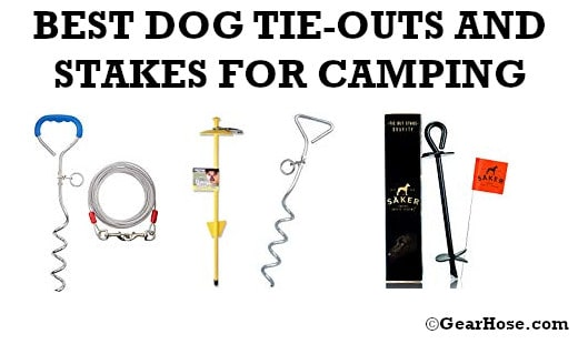 BEST DOG TIE-OUTS AND STAKES FOR CAMPING