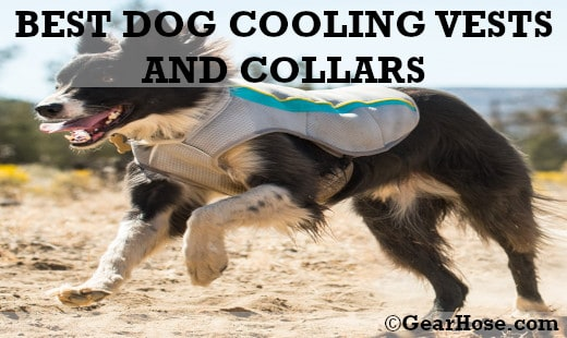 BEST DOG COOLING VESTS